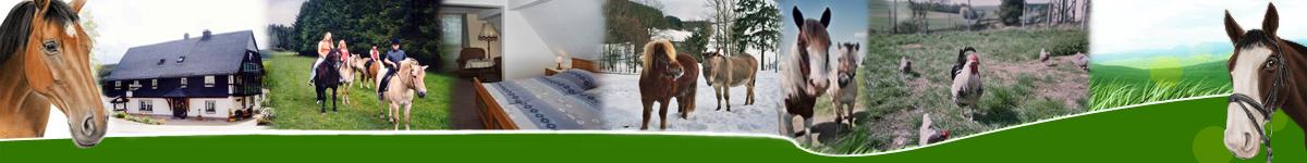 Ponyhof Klein